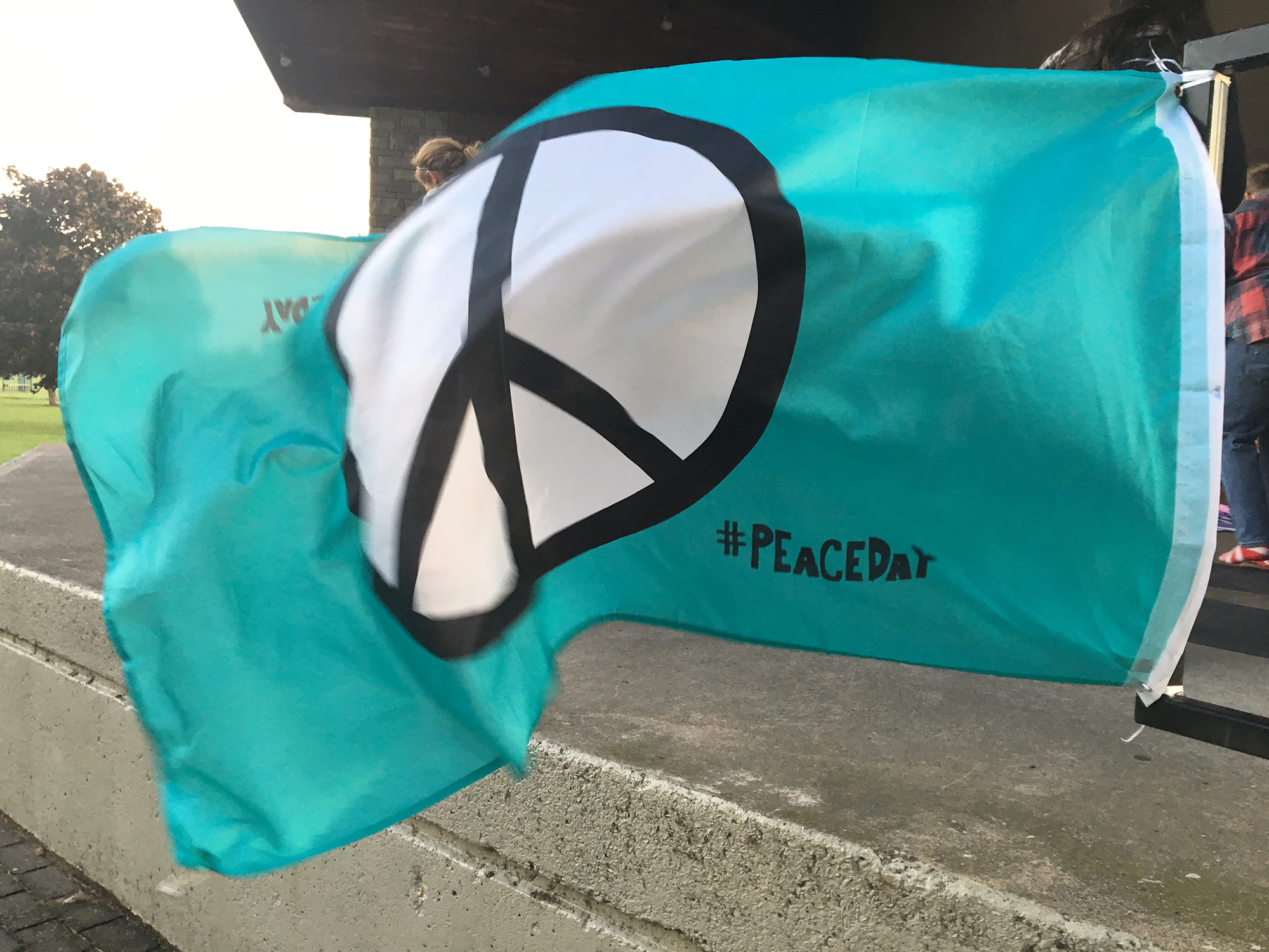 Peace Day Flag