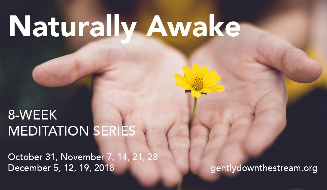 Naturally Awake | Meditation Series