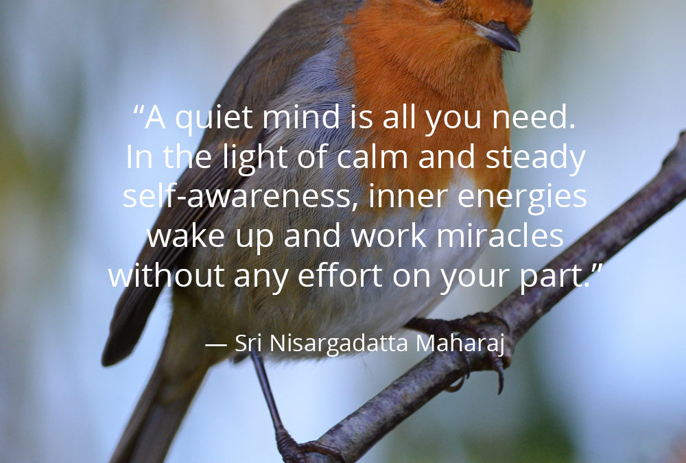 A quiet mind is all you need