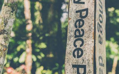 Peace Pole Painting Workshop